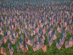 This sea of flags was from Somers, Connecticut a few years ago. Each stands for a fallen soldier.